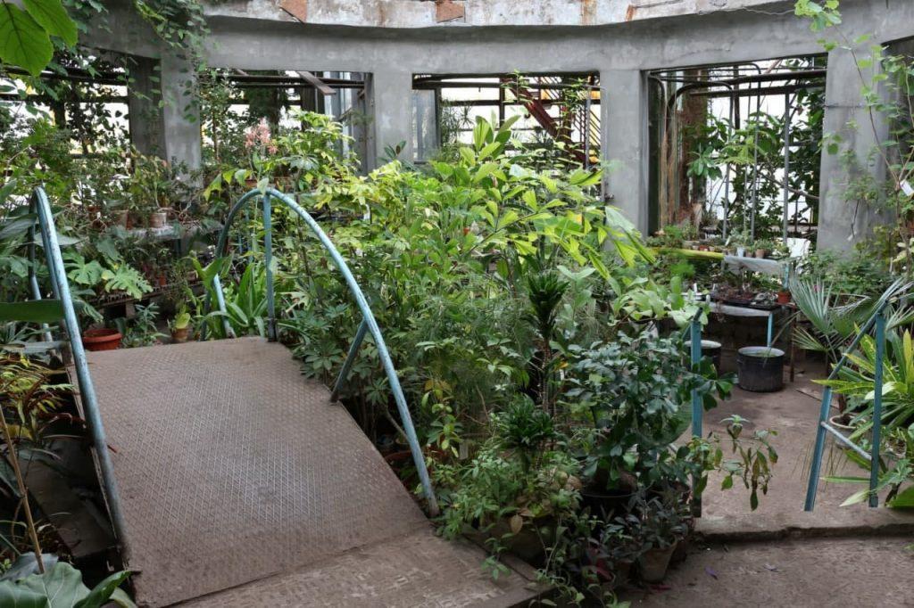 👍Нарешті! Ботанічний сад ДНУ буде працювати у вихідний день.
