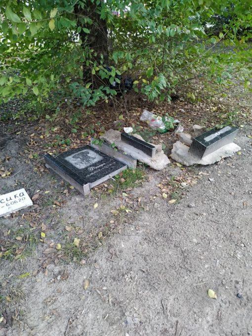 Комунальники перетворили на смітник  кладовище домашніх тварин у Дніпрі